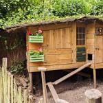 Urban farming I