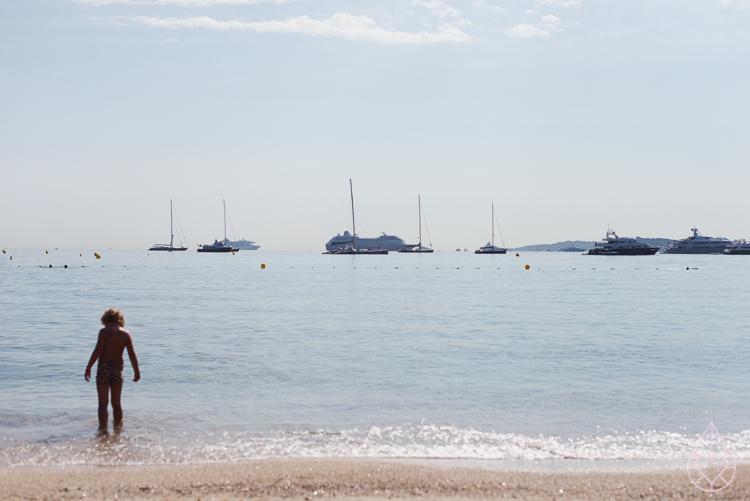 Wolf-Saint Tropez