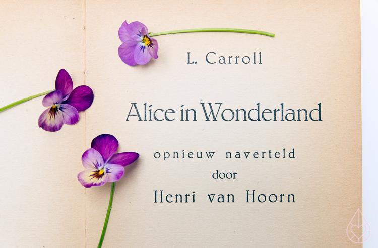Alice in Wonderland violins