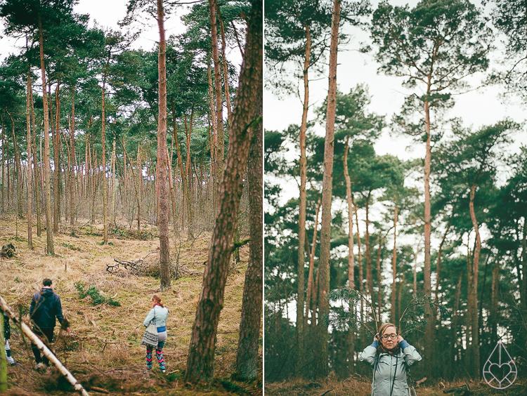 Nikon FE-woods