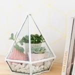 Diamond planter
