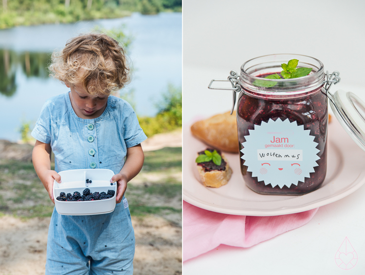 picking wild blackberries and making jam, by Zilverblauw.nl