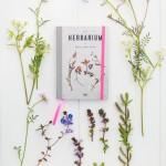 Give away: Pocket Herbarium