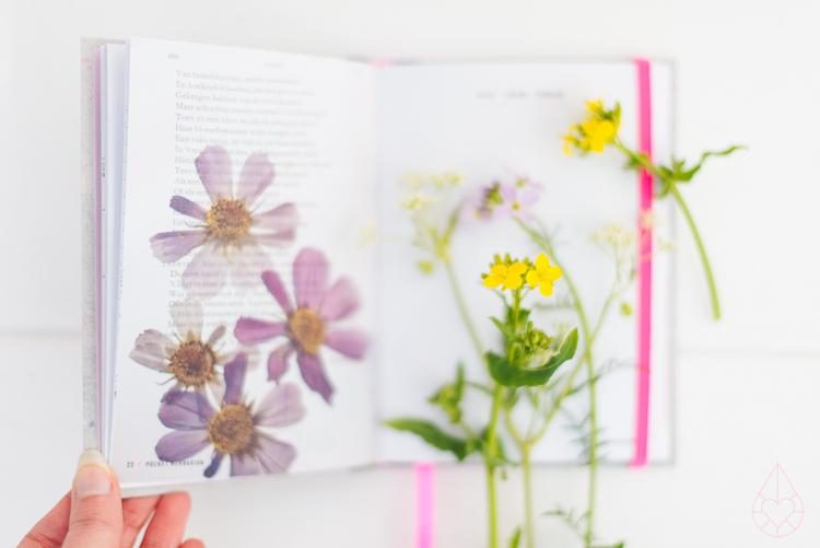 pocket herbarium, by zilverblauw.nl