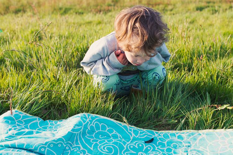 picknicken 2015, by zilverblauw.nl
