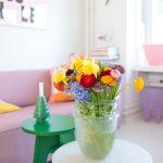 Winterdip & voorjaarsbloemen