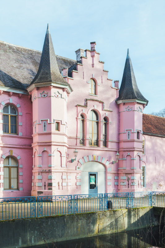 Roze kasteel Land van Ooit