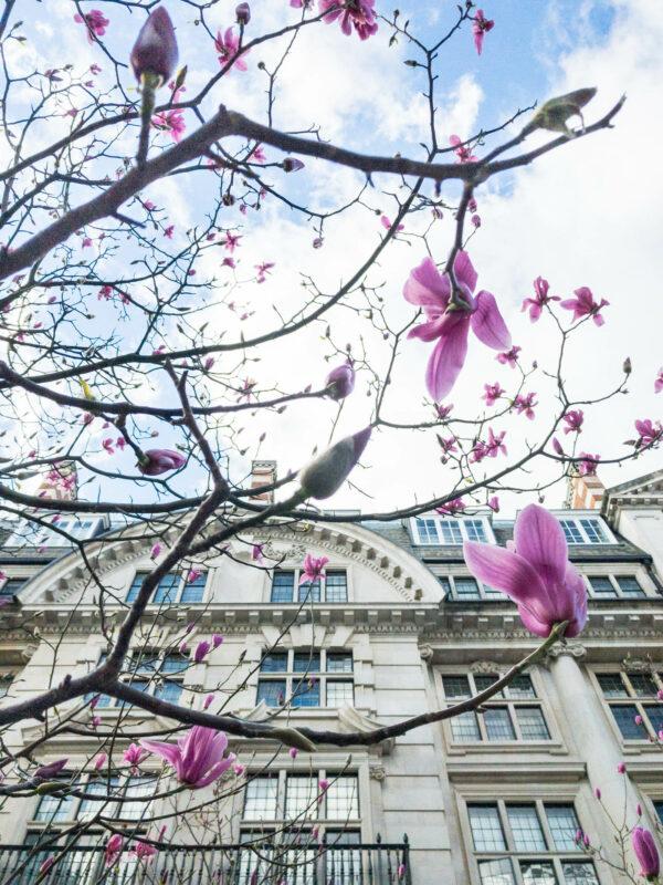 lente in Londen
