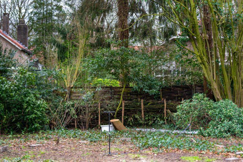 tuin voor de boomhut